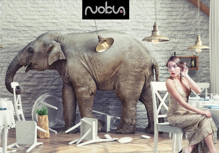 A great web design by NOKUA DESIGN, Kuala Lumpur, Malaysia: