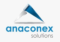 A great web design by AnaConEx Solutionns, Karachi, Pakistan: