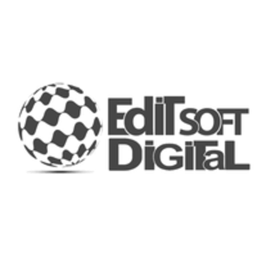 A great web design by Editsoft Digital Pvt Ltd - Digital Marketing & SEO Services, Delhi, India: