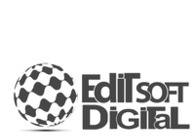 A great web design by Editsoft Digital Pvt Ltd - Digital Marketing & SEO Services, Delhi, India: