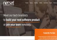 A great web design by Netset Software Solutions, Mohali, India: