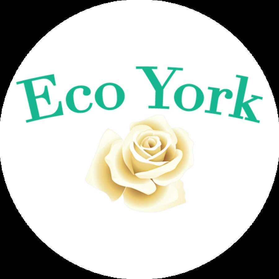 A great web design by Eco York, Ahmedabad, India: