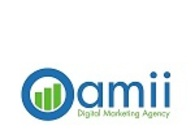 A great web design by Oamii Digital Marketing Agency, West Palm Beach, FL: