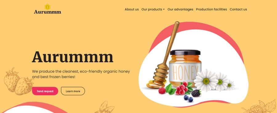 A great web design by Weblium Studio, Florida, FL: