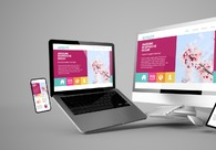 A great web design by Read hosting review, Amer, India: