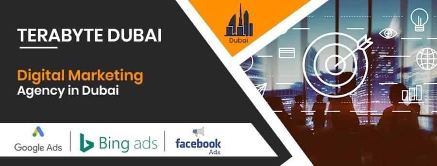 A great web design by TeraByte Digital Marketing Agency Dubai, Dubai, India: