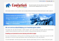 A great web design by Evolution Email Marketing & Design, Cape Town, South Africa: