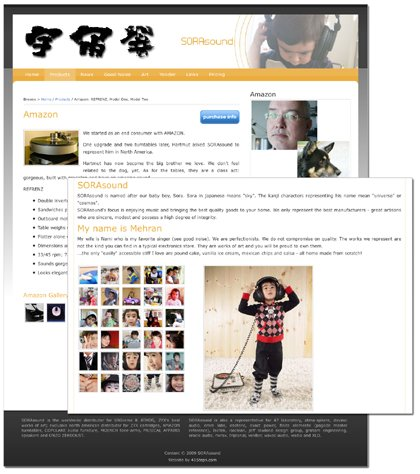 A great web design by $395 websites @ 41Steps, Chicago, IL: