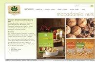 A great web design by Evolved Websites, Byron Bay, Australia: