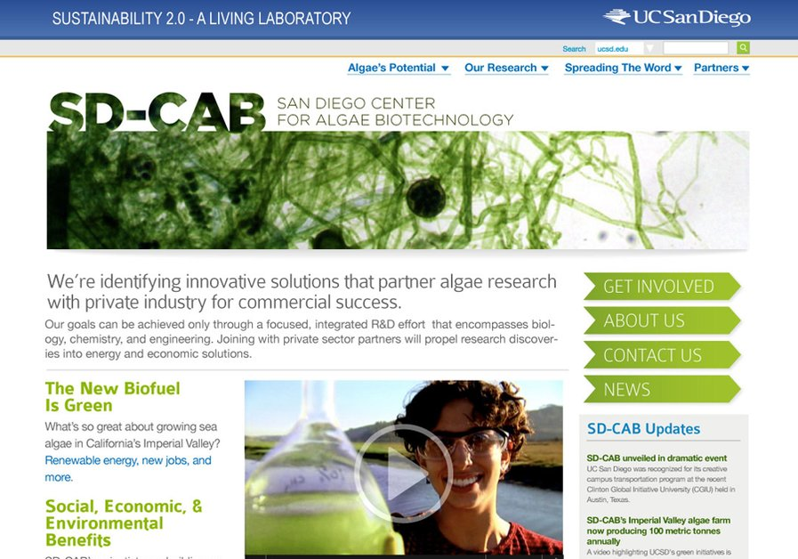 A great web design by Matt Kirkland - web design, Los Angeles, CA: