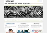A great web design by 3 Beyaz, Istanbul, Turkey: