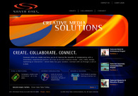 A great web design by Silver Oaks, Chicago, IL: