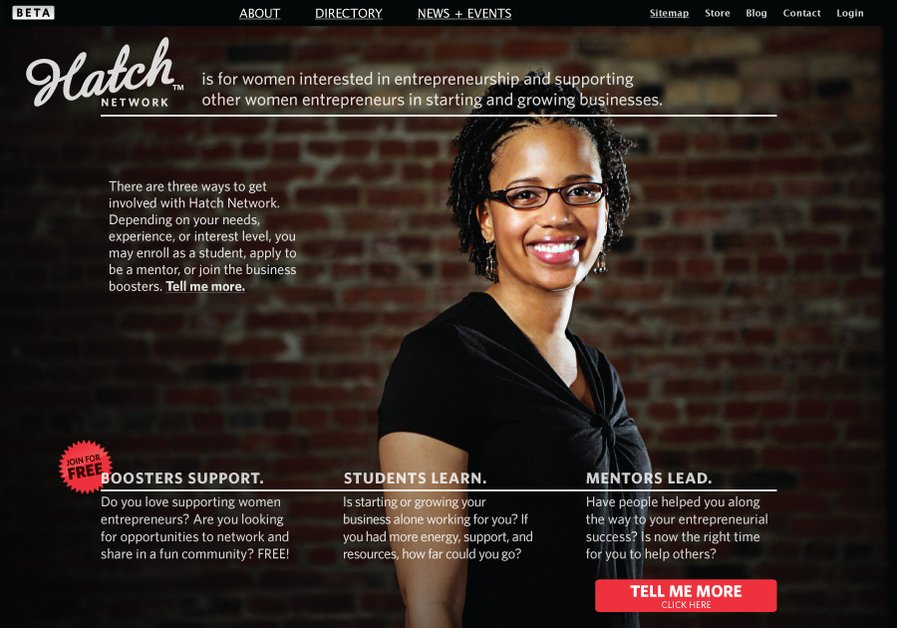 A great web design by Synthetic, Minneapolis, MN: