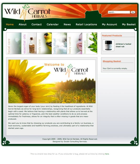 A great web design by Zocalo Consulting Services, Seattle, WA: