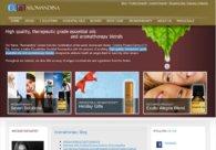 A great web design by Yapaweb: