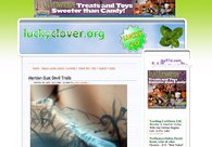 A great web design by The Lucky Clover, San Francisco, CA: