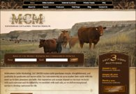 A great web design by CodeGeek.net, Fort Collins, CO: