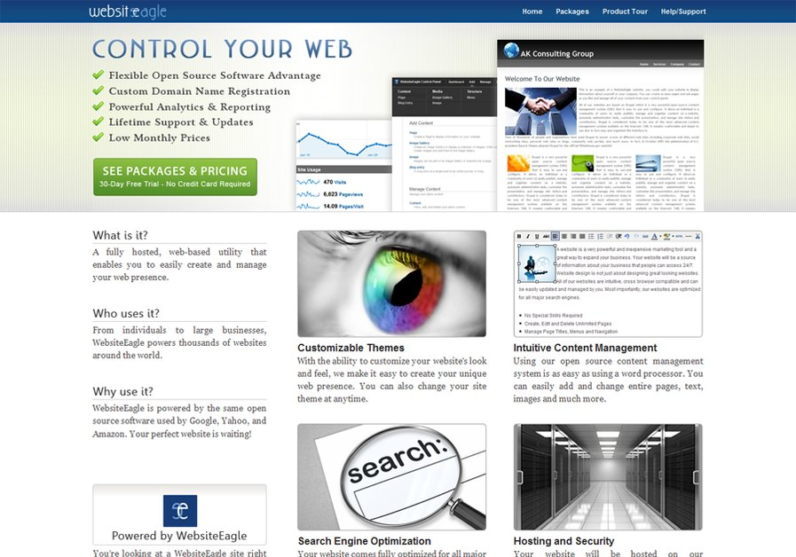 A great web design by WebsiteEagle, New York, NY: