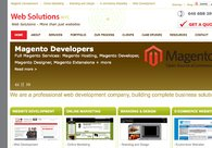 A great web design by Web Solutions NYC, New York, NY: