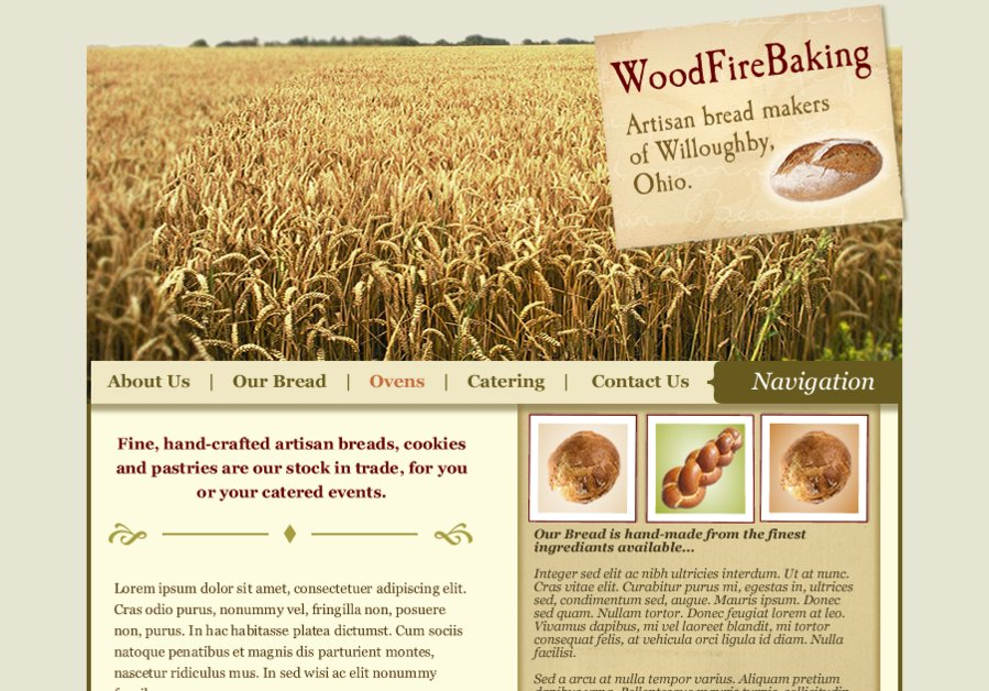 A great web design by DMWebsites, Cleveland, OH: