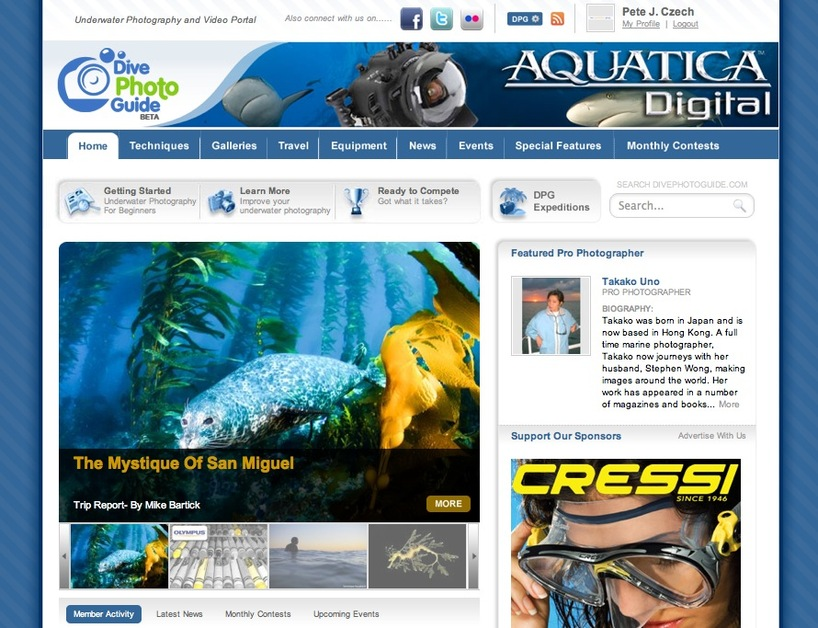 A great web design by New Possibilities Group, LLC, New York, NY: