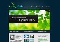 A great web design by Spring Pixels, Sydney, Australia: