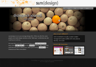 A great web design by sum(design), Albany, NY: