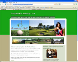 A great web design by Rich Costello, Las Vegas, NV:
