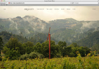 A great web design by HoffmanChrisman, San Francisco, CA: