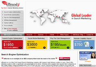 A great web design by eBrandz Inc, New York, NY:
