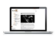 A great web design by BEAK Graphic Design, Copenhagen, Denmark: