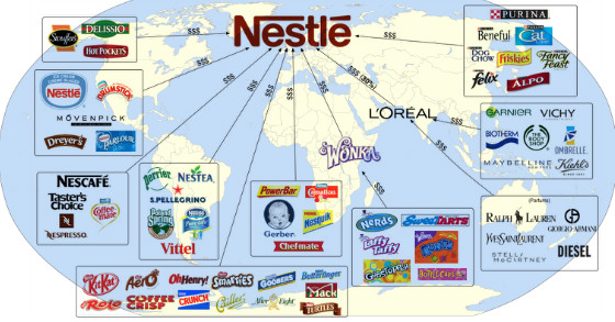 nestle struggles with enterprise systems