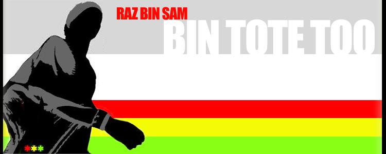 Bin Tote Too