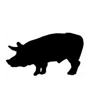 Pig Sound Effects