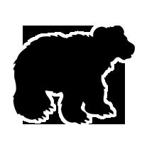 Bear Sound Effects
