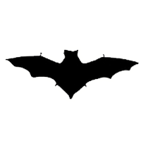 Bat Sound Effects