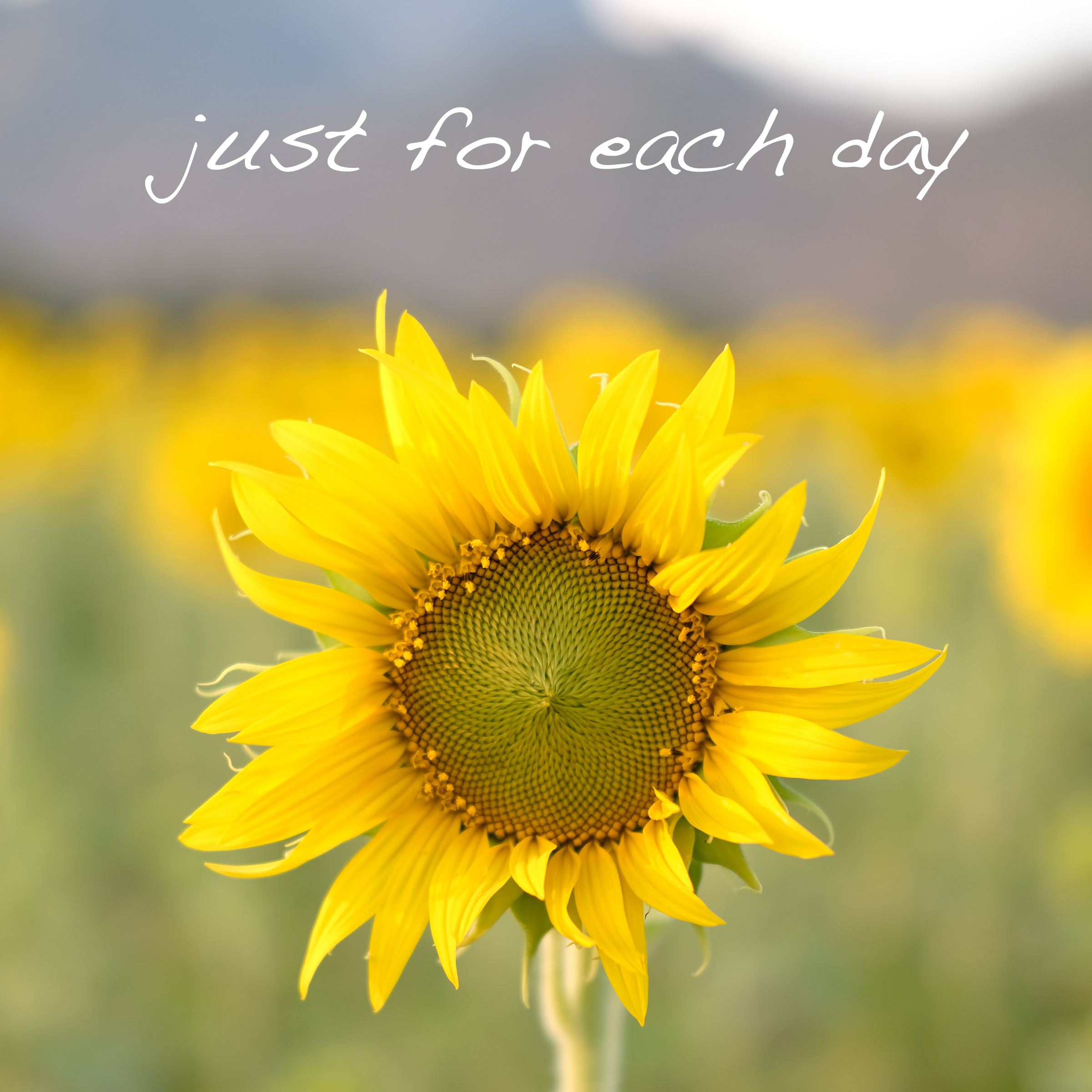 Just for Each Day