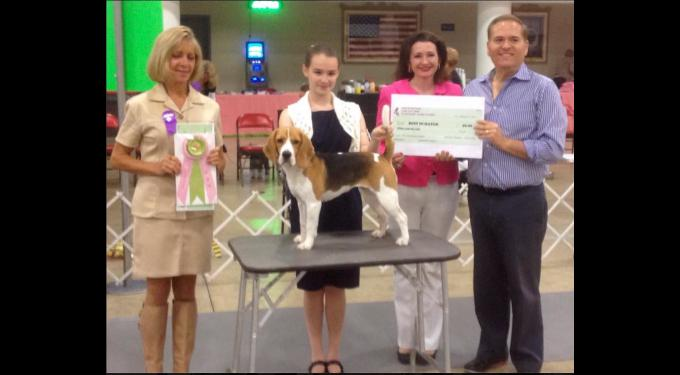 Palm Beach Dog Show