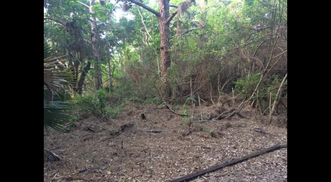 Bexley Trail Community Park