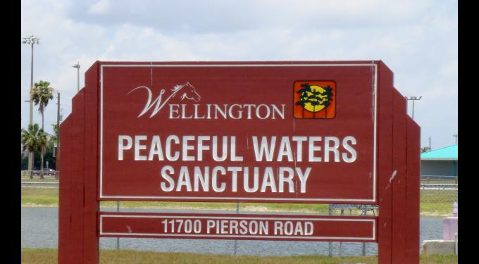 Peaceful Waters Sanctuary