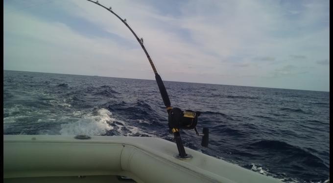 BOLO Sportsfishing Charters