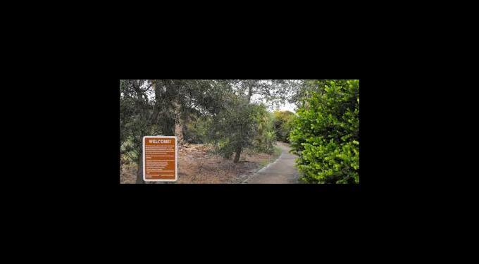 Rosemary Scrub Area