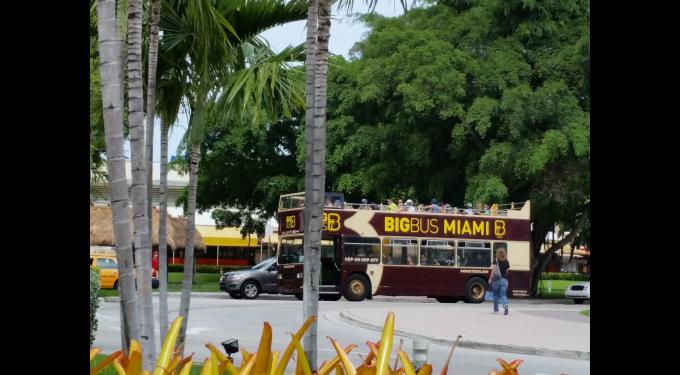 Big Bus Tours Miami