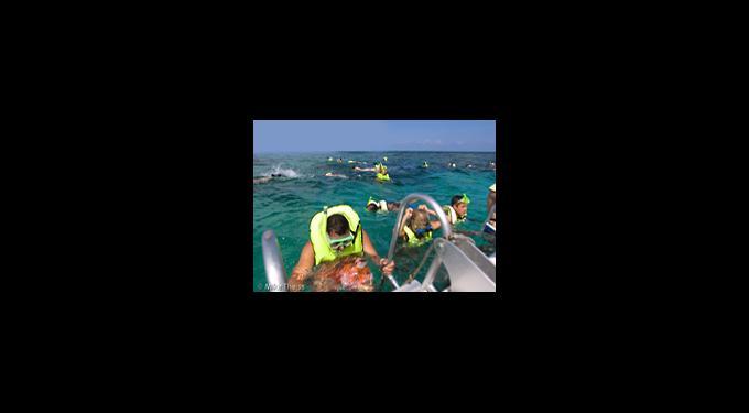 Sundiver Snorkeling Tours