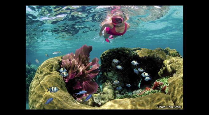 Aloha Watersports