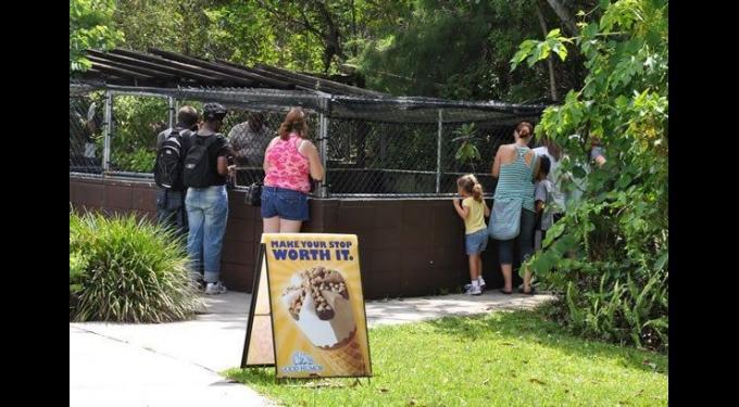 Everglades Safari Park