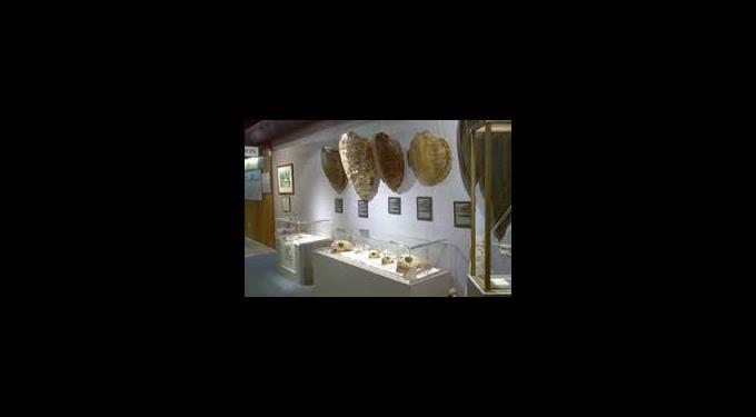 Crane Point Museum & Nature Center