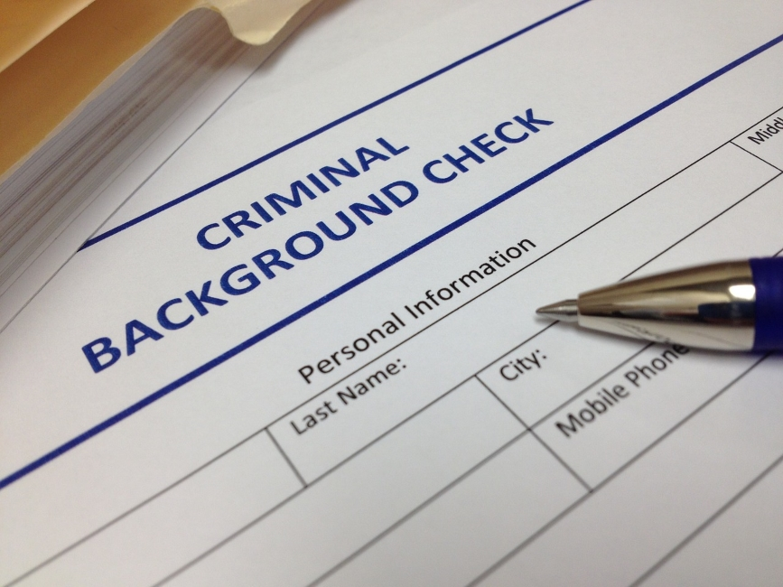 do it yourself background check