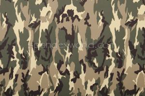 Printed Camouflage  (Black/Olive/Beige)