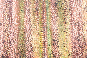 Stretch Sequins (Black/Pearl)